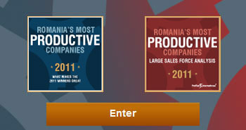 Romania's most productive companies 2011